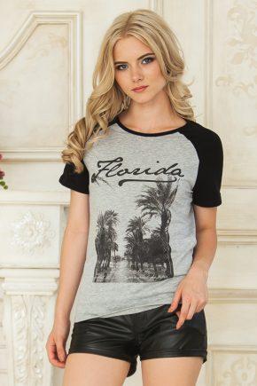 tshirt-florida