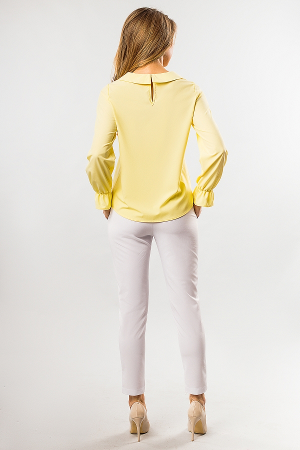 blouse-round-collar-yellow-color-back