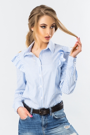 striped-shirt-with-wings